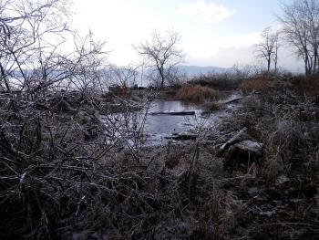 Icy view at Croton Landing Park.